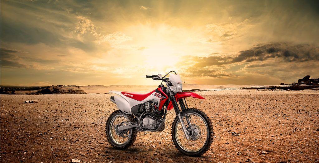 Honda CRF 230F 2019
